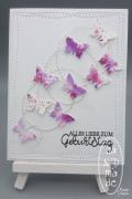 1_Schmetterlinge_Auf_Draht